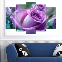 Flowers, Bouquet, Rose » Purple, Gray, Dark grey
