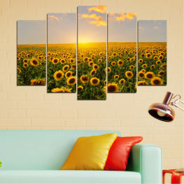 Nature, Flowers, Sun, Sunflower, Sky, Field » Green, Brown, Black, Gray, Beige