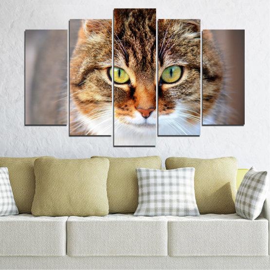 Декоративни панели и картини от канава - от 5 части №0473 » Кафяв, Сив, Тъмно сив » Животни, Портрет, Котка Form #1