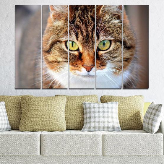 Декоративни панели и картини от канава - от 5 части №0473 » Кафяв, Сив, Тъмно сив » Животни, Портрет, Котка Form #2