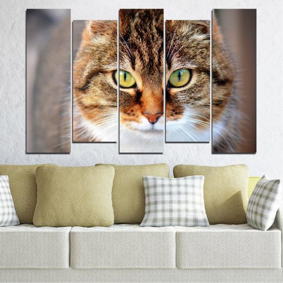Декоративни панели и картини от канава - от 5 части №0473 » Кафяв, Сив, Тъмно сив » Животни, Портрет, Котка Form #3