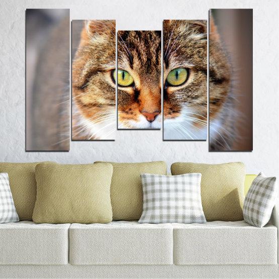 Декоративни панели и картини от канава - от 5 части №0473 » Кафяв, Сив, Тъмно сив » Животни, Портрет, Котка Form #4