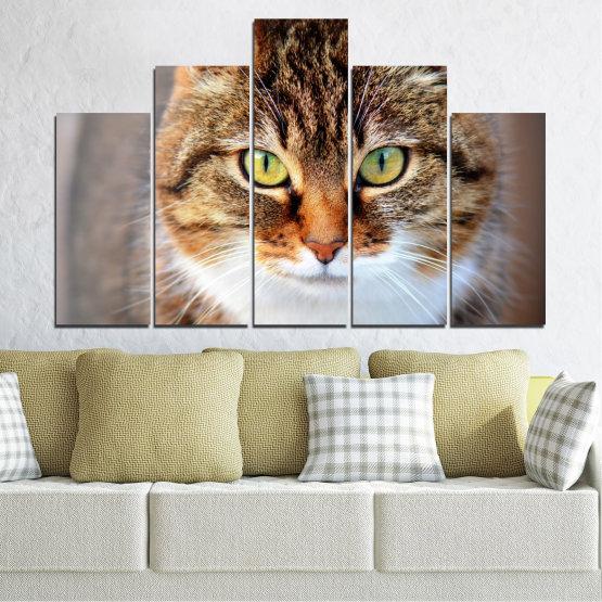 Декоративни панели и картини от канава - от 5 части №0473 » Кафяв, Сив, Тъмно сив » Животни, Портрет, Котка Form #5