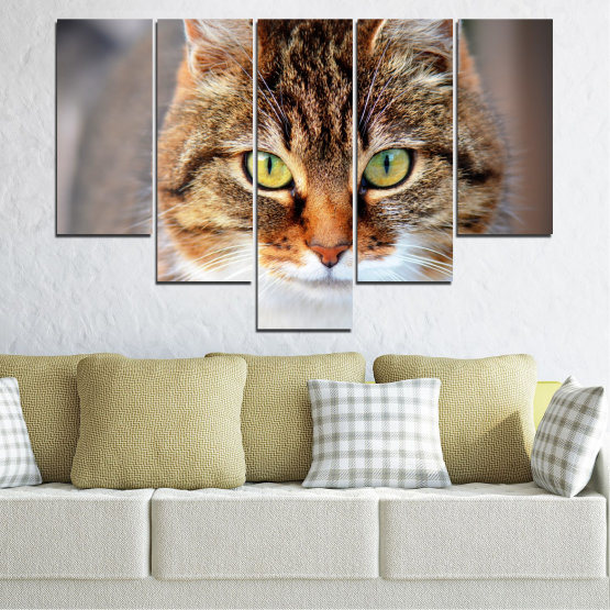 Декоративни панели и картини от канава - от 5 части №0473 » Кафяв, Сив, Тъмно сив » Животни, Портрет, Котка Form #6