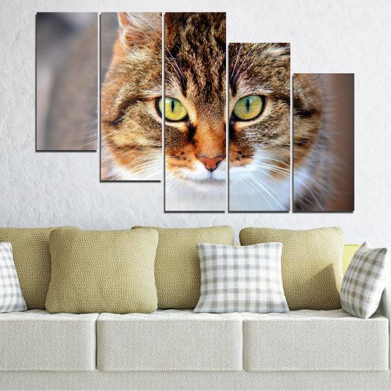 Декоративни панели и картини от канава - от 5 части №0473 » Кафяв, Сив, Тъмно сив » Животни, Портрет, Котка Form #7