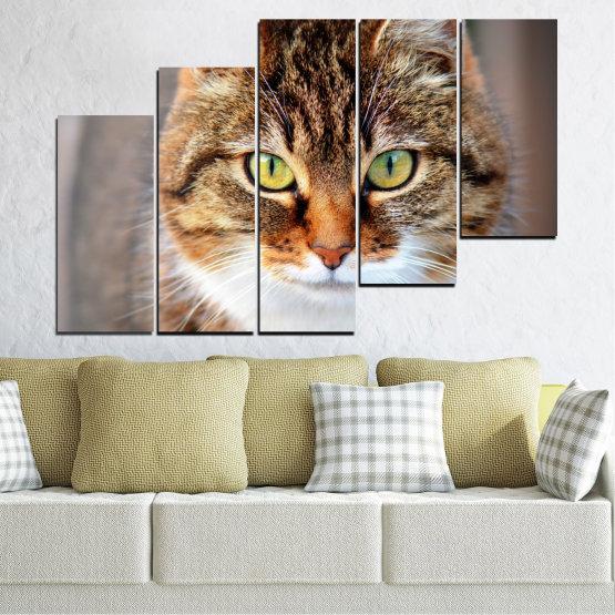 Декоративни панели и картини от канава - от 5 части №0473 » Кафяв, Сив, Тъмно сив » Животни, Портрет, Котка Form #8
