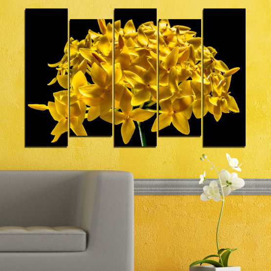 Canvas prints & wall decorative panels - 5 pieces №0479 » Green, Yellow, Orange, Black » Flowers, Collage, Shine Form #3