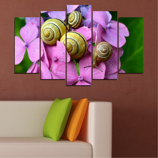 Canvas prints & wall decorative panels - 5 pieces №0486 » Purple, Green, Gray, Milky pink » Flowers, Animal, Snail Form #1