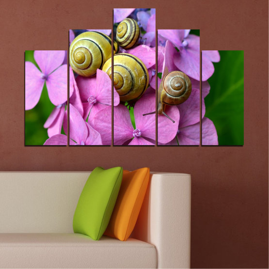 Canvas prints & wall decorative panels - 5 pieces №0486 » Purple, Green, Gray, Milky pink » Flowers, Animal, Snail Form #5