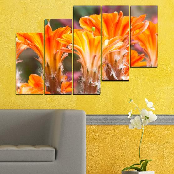 Декоративни панели и картини от канава - от 5 части №0487 » Оранжев, Кафяв, Сив » Природа, Цветя, Кактус Form #8