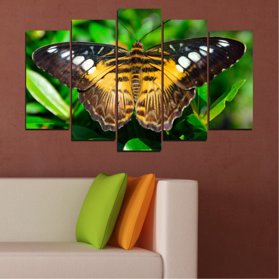 Canvas prints & wall decorative panels - 5 pieces №0490 » Green, Brown, Black, Dark grey » Nature, Animal, Butterfly Form #1