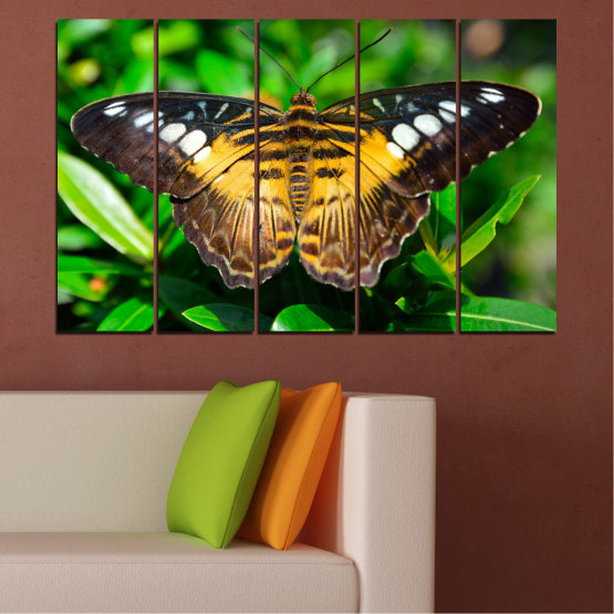 Canvas prints & wall decorative panels - 5 pieces №0490 » Green, Brown, Black, Dark grey » Nature, Animal, Butterfly Form #2
