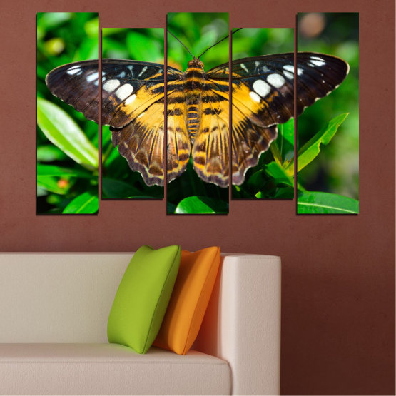 Canvas prints & wall decorative panels - 5 pieces №0490 » Green, Brown, Black, Dark grey » Nature, Animal, Butterfly Form #3