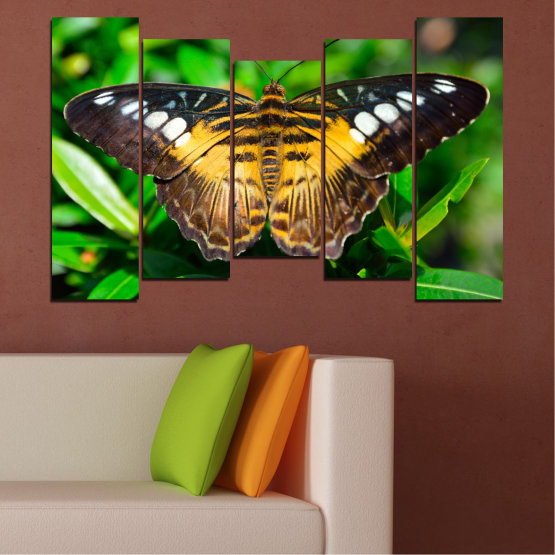 Canvas prints & wall decorative panels - 5 pieces №0490 » Green, Brown, Black, Dark grey » Nature, Animal, Butterfly Form #4