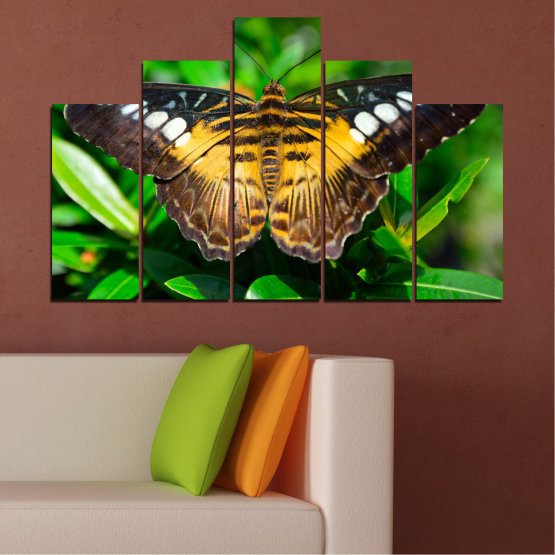 Canvas prints & wall decorative panels - 5 pieces №0490 » Green, Brown, Black, Dark grey » Nature, Animal, Butterfly Form #5
