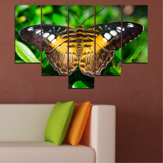 Canvas prints & wall decorative panels - 5 pieces №0490 » Green, Brown, Black, Dark grey » Nature, Animal, Butterfly Form #6