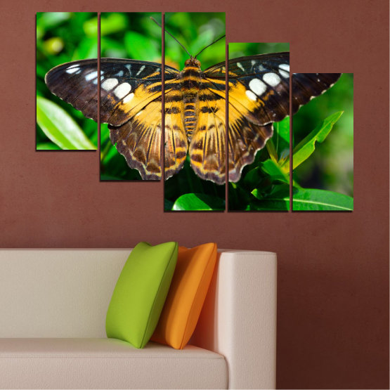 Canvas prints & wall decorative panels - 5 pieces №0490 » Green, Brown, Black, Dark grey » Nature, Animal, Butterfly Form #7