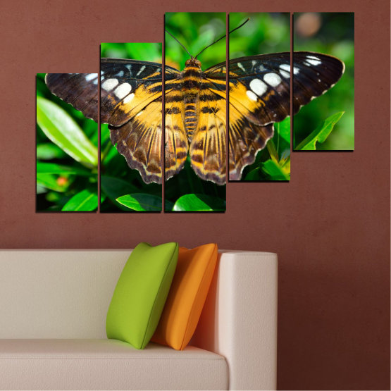 Canvas prints & wall decorative panels - 5 pieces №0490 » Green, Brown, Black, Dark grey » Nature, Animal, Butterfly Form #8
