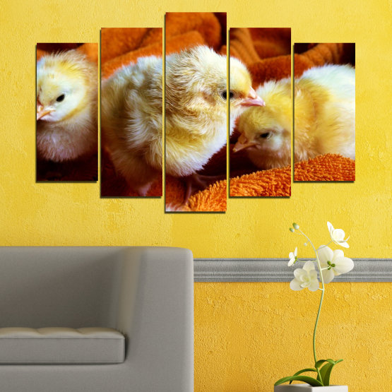 Canvas prints & wall decorative panels - 5 pieces №0492 » Red, Orange, Brown, Black » Animal, Birds, Chicken Form #1