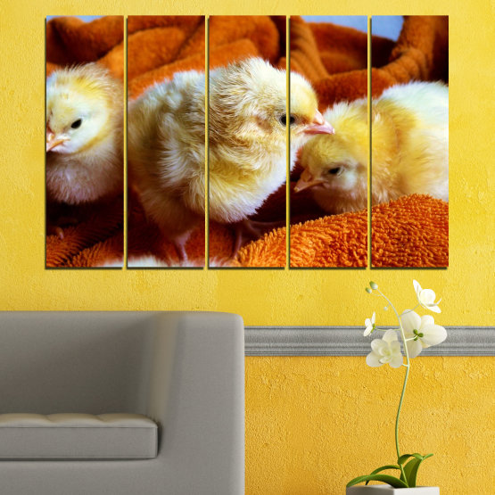 Canvas prints & wall decorative panels - 5 pieces №0492 » Red, Orange, Brown, Black » Animal, Birds, Chicken Form #2