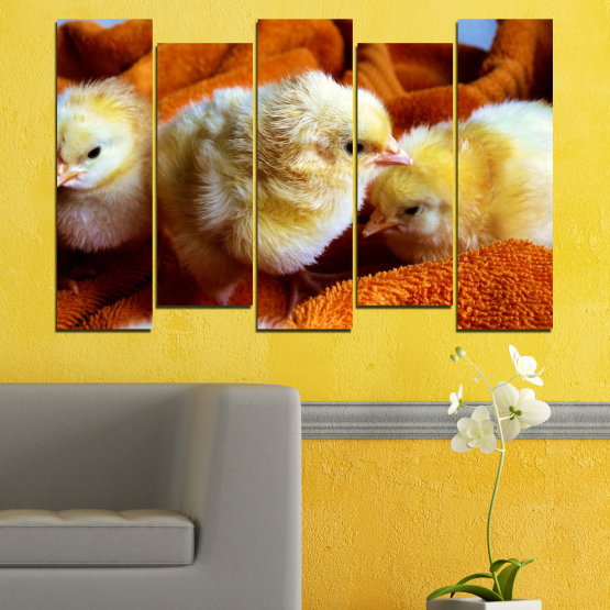 Canvas prints & wall decorative panels - 5 pieces №0492 » Red, Orange, Brown, Black » Animal, Birds, Chicken Form #3