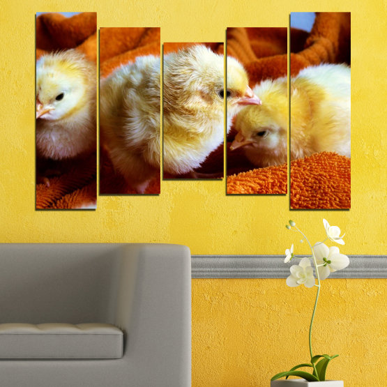 Canvas prints & wall decorative panels - 5 pieces №0492 » Red, Orange, Brown, Black » Animal, Birds, Chicken Form #4