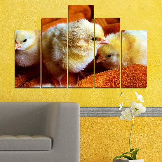 Canvas prints & wall decorative panels - 5 pieces №0492 » Red, Orange, Brown, Black » Animal, Birds, Chicken Form #5