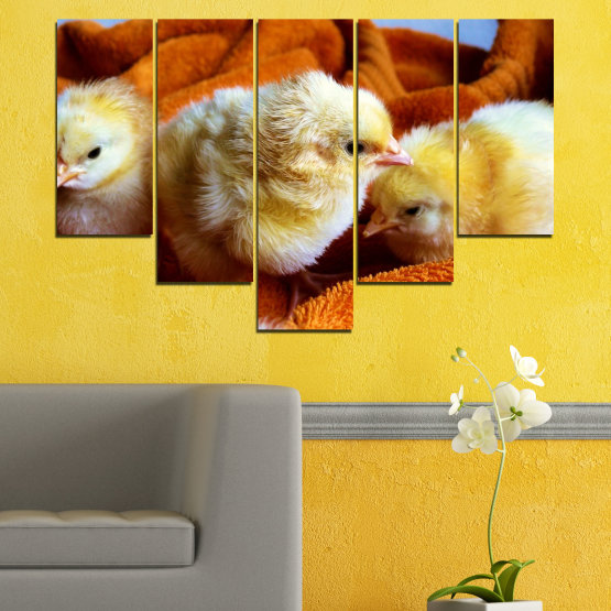 Canvas prints & wall decorative panels - 5 pieces №0492 » Red, Orange, Brown, Black » Animal, Birds, Chicken Form #6