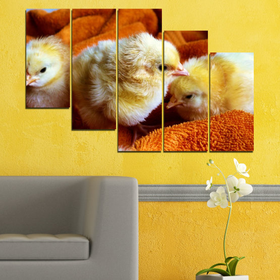 Canvas prints & wall decorative panels - 5 pieces №0492 » Red, Orange, Brown, Black » Animal, Birds, Chicken Form #7