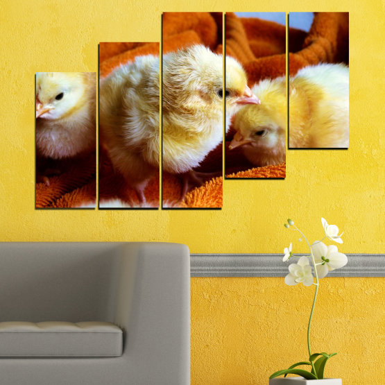 Canvas prints & wall decorative panels - 5 pieces №0492 » Red, Orange, Brown, Black » Animal, Birds, Chicken Form #8
