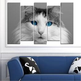 Декоративни панели и картини от канава - от 5 части №0497 Животни 3-та Форма