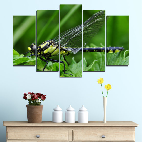 Canvas prints & wall decorative panels - 5 pieces №0499 » Green, Black, Gray » Nature, Animal, Water horse Form #1