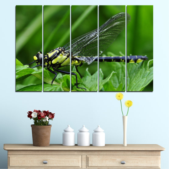 Canvas prints & wall decorative panels - 5 pieces №0499 » Green, Black, Gray » Nature, Animal, Water horse Form #2