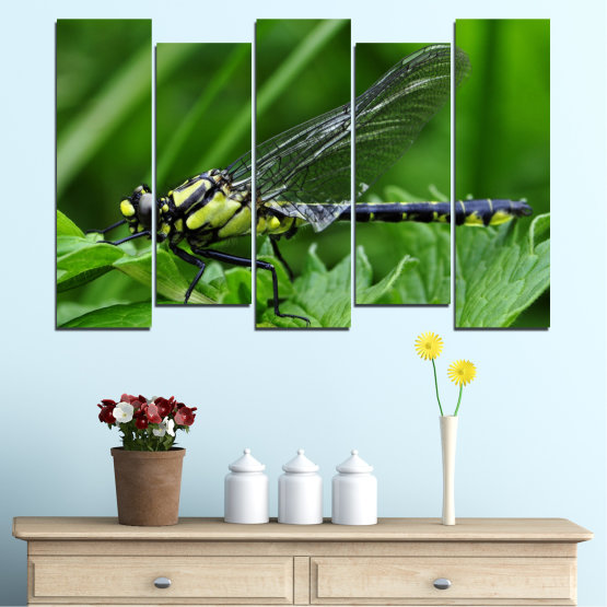 Canvas prints & wall decorative panels - 5 pieces №0499 » Green, Black, Gray » Nature, Animal, Water horse Form #3