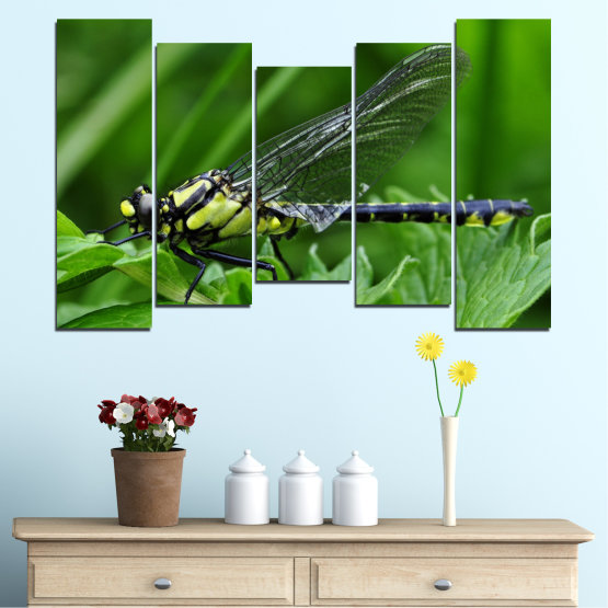 Canvas prints & wall decorative panels - 5 pieces №0499 » Green, Black, Gray » Nature, Animal, Water horse Form #4