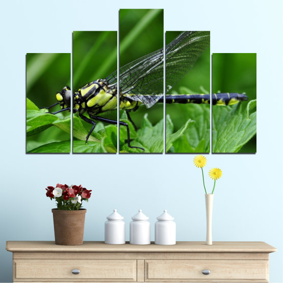 Canvas prints & wall decorative panels - 5 pieces №0499 » Green, Black, Gray » Nature, Animal, Water horse Form #5