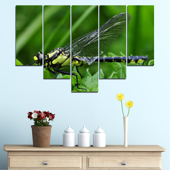 Canvas prints & wall decorative panels - 5 pieces №0499 » Green, Black, Gray » Nature, Animal, Water horse Form #6