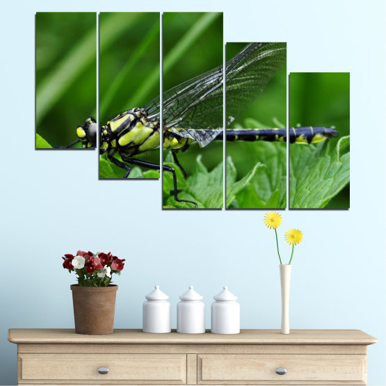 Canvas prints & wall decorative panels - 5 pieces №0499 » Green, Black, Gray » Nature, Animal, Water horse Form #7