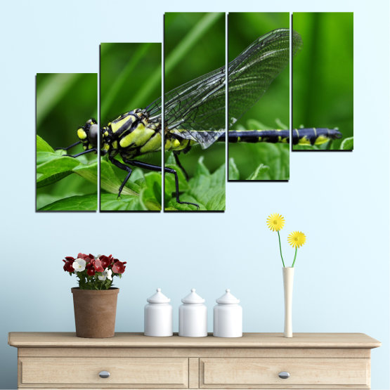 Canvas prints & wall decorative panels - 5 pieces №0499 » Green, Black, Gray » Nature, Animal, Water horse Form #8