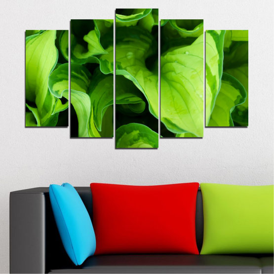 Canvas prints & wall decorative panels - 5 pieces №0500 » Green, Black » Abstraction, Nature, Leaf Form #1