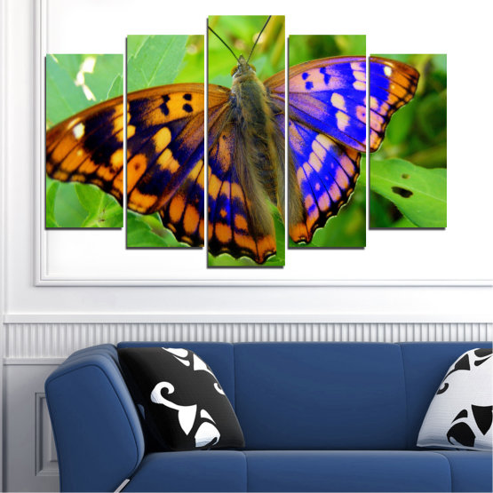 Canvas prints & wall decorative panels - 5 pieces №0502 » Green, Black, Gray » Nature, Animal, Butterfly Form #1