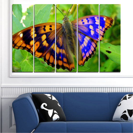 Canvas prints & wall decorative panels - 5 pieces №0502 » Green, Black, Gray » Nature, Animal, Butterfly Form #2