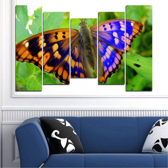 Canvas prints & wall decorative panels - 5 pieces №0502 » Green, Black, Gray » Nature, Animal, Butterfly Form #4