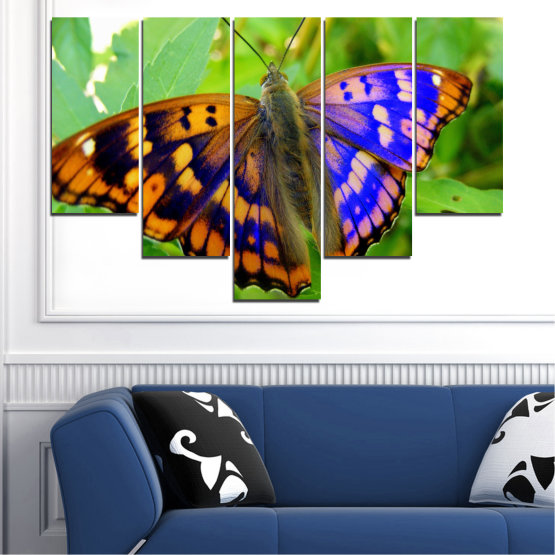 Canvas prints & wall decorative panels - 5 pieces №0502 » Green, Black, Gray » Nature, Animal, Butterfly Form #6