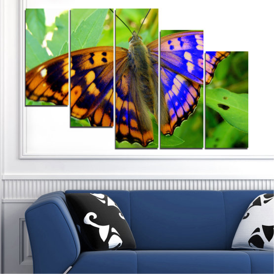 Canvas prints & wall decorative panels - 5 pieces №0502 » Green, Black, Gray » Nature, Animal, Butterfly Form #7
