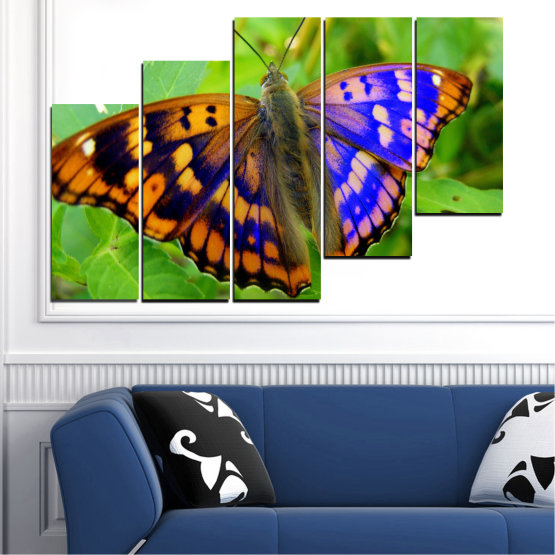 Canvas prints & wall decorative panels - 5 pieces №0502 » Green, Black, Gray » Nature, Animal, Butterfly Form #8