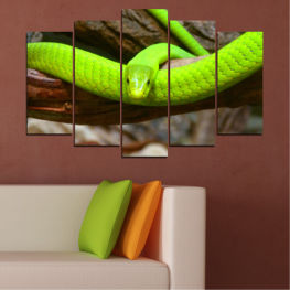 Tree, Snake, Reptile » Green, Brown, Black, Dark grey