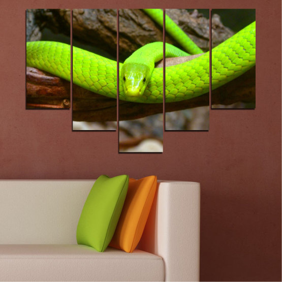 Декоративни панели и картини от канава - от 5 части №0513 » Зелен, Кафяв, Черен, Тъмно сив » Дърво, Змия, Влечуго Form #6