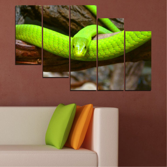 Декоративни панели и картини от канава - от 5 части №0513 » Зелен, Кафяв, Черен, Тъмно сив » Дърво, Змия, Влечуго Form #7