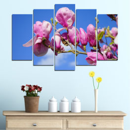 Flowers, Nature, Tree » Purple, Blue, Turquoise, Gray, Milky pink